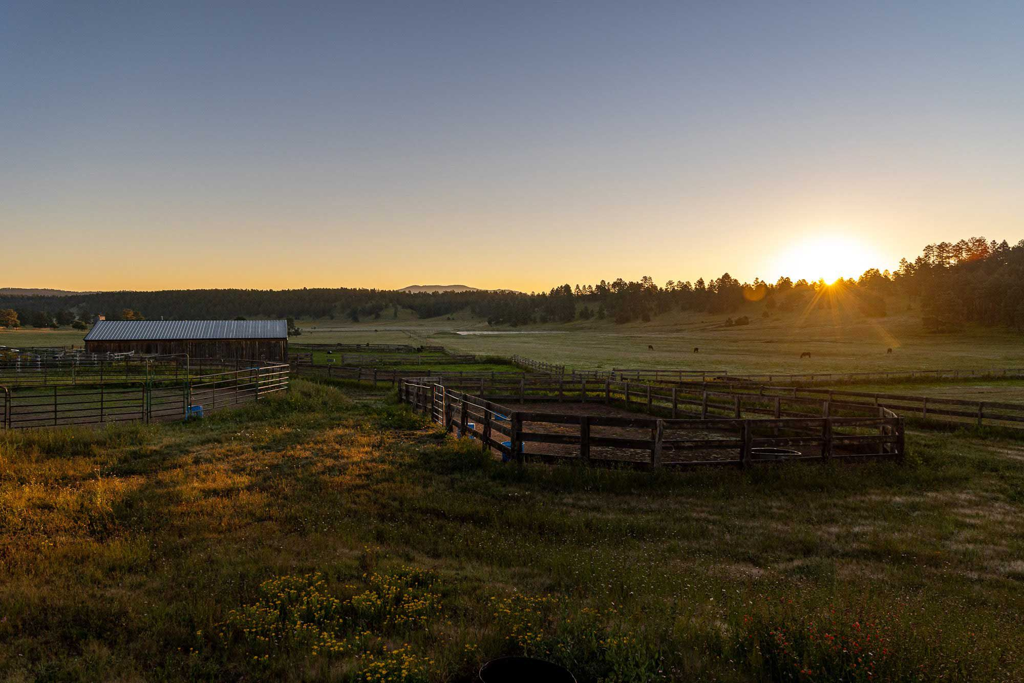 Sunrise over the paddocks and round pens at the N Bar Ranch.